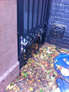 Our front door 8:30am 10/30/12