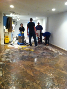 Final day before moving back. Yes, we DID clean and seal the floor really well!!